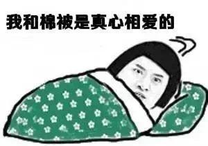 冷冷冷冷冷!大降温把上海人都冻成了段子手,更惨的是他们的手机…