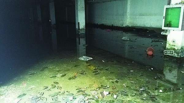 荣盛名邸地下车库臭水淹了10年没人管 开发商袖手旁观