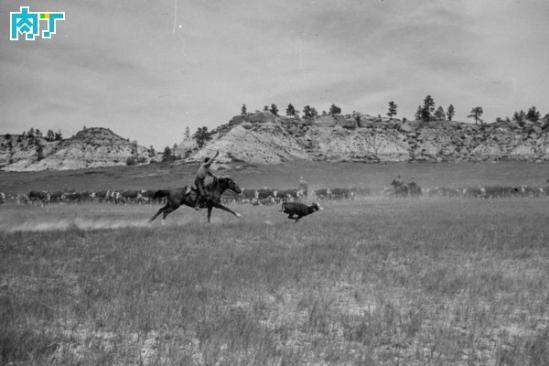 美国情结 西部牛仔快意人生黑白老照片