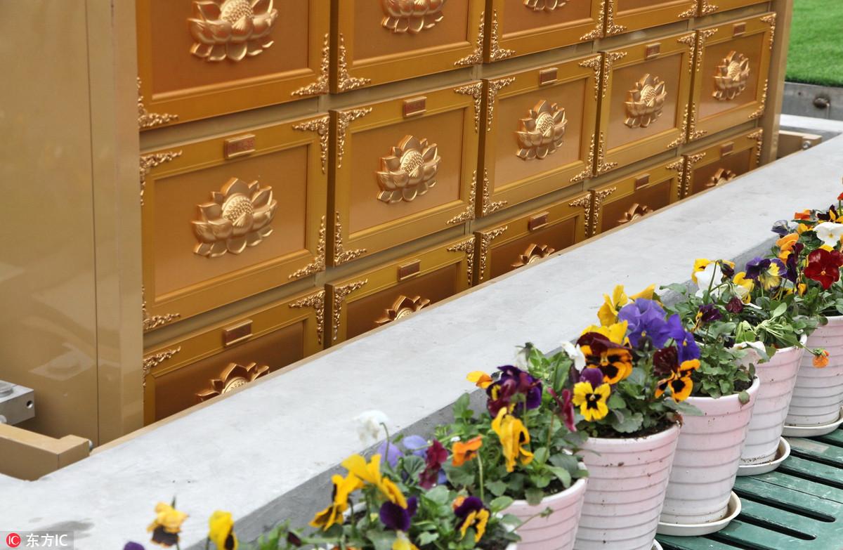 上海墓地出小高层了!售价超1万2!看完背后一凉...