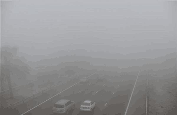 阿联酋出现季节性浓雾可见度低 诸多航班受影响