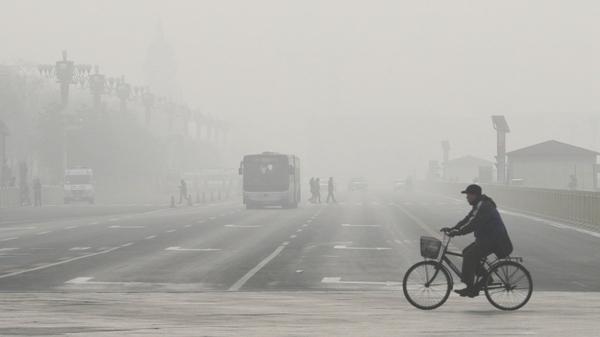 """环保部回应""""北京有空气质量监测站点设在公园"""""""