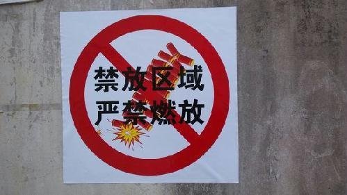 新春走基层:昨夜今晨 申城5万民警全员上岗管控烟花