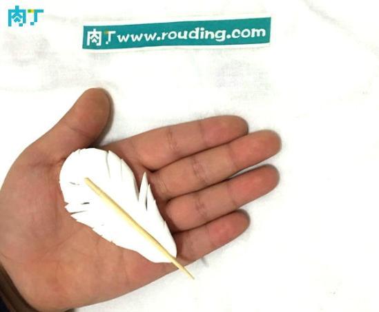 硕硕的diy轻粘土作品 简单小羽毛做法步骤