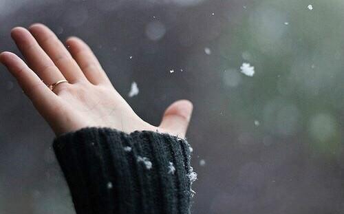 你错过的魔都初雪美景在这里!看到的人能幸福一整年!
