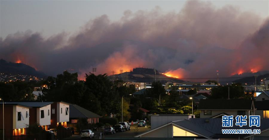 新西兰一城市因山火进入紧急状态(组图)