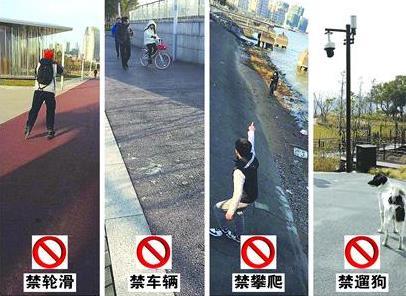 滨江空间陆续开放 黄浦江两岸仍存不文明现象
