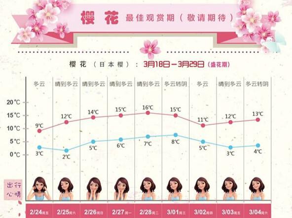 早樱开放 第七届上海樱花节3月15日顾村公园内开幕