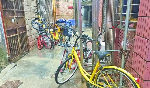 普陀区试点:公共自行车不得驶入居民区