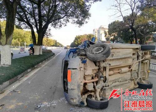 """池州""""三棵树""""引争议:昔日流传佳话 今朝屡发交通事故?"""