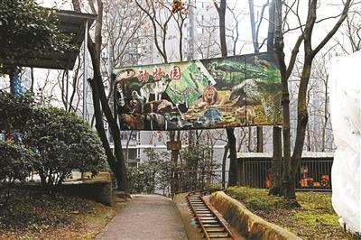 一个人的动物园停业 私人动物园将何去何从?(图)