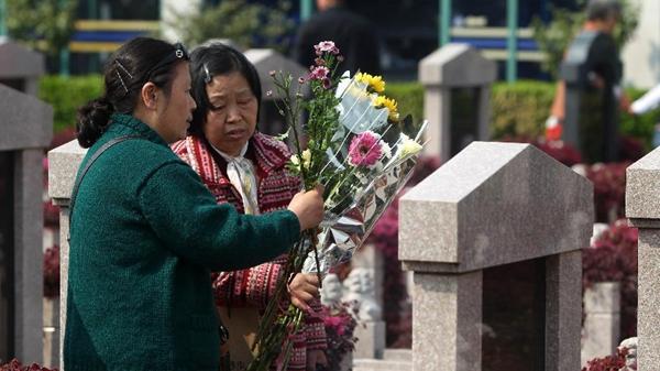 清明上海预计817万人次出行祭扫 部分公墓轨交短驳方案公布
