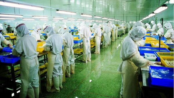浙江警方跨四省捣毁特大有毒食品生产产业链 涉案两亿