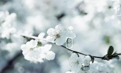 节气养生 | 今日春分,莺飞草长,养生一定要做对这些,才不负春光!