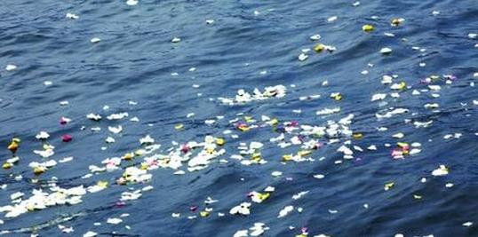 在大海中永生 2017年海葬公祭典礼上午在沪举行