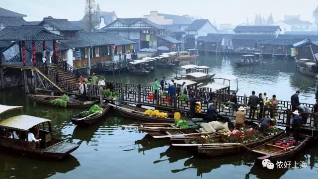 嘉兴全面接轨上海!上海人能享受哪些民生利好?