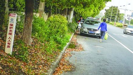 上海浦东秀沿西路北侧没人行道 居民出行险象环生