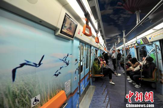 """站在<a href='http://search.xinmin.cn/?q=沈阳地铁' target='_blank' class='keywordsSearch'>沈阳地铁</a>二号线车厢内宛如经历一场踏青之旅,沈北七星湿地成群的鸟儿就在乘客身边""""飞翔""""。 于海洋 摄"""