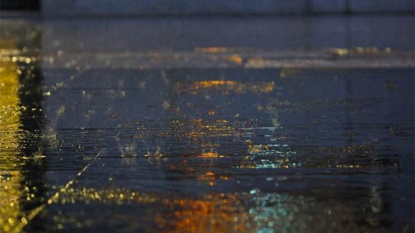 今晚申城南部中到大雨 明天降至20度、周日升至30度