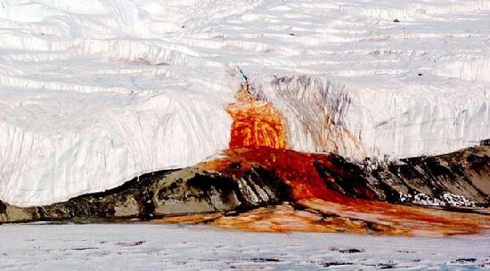 南极血瀑布揭开 一个世纪的谜团竟是这样