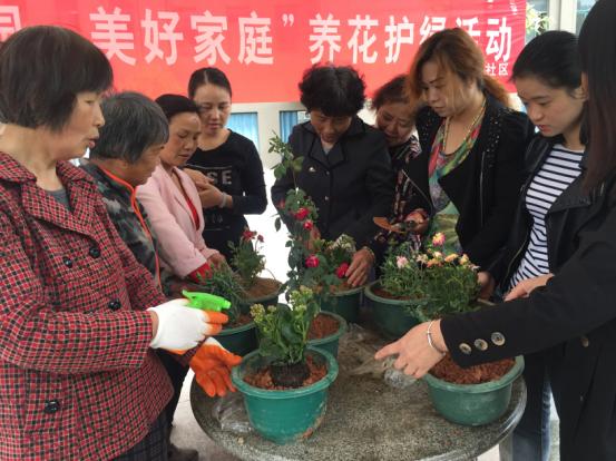 湾里区牌楼社区开展养花护绿活动