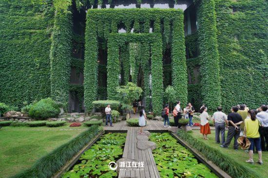 """楼体穿绿装变成""""空调房"""" 盘点各地""""绿色童话王国"""""""