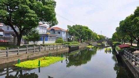 """上海水务局标准化""""治河"""" 防汛通道宽度不小于6米"""