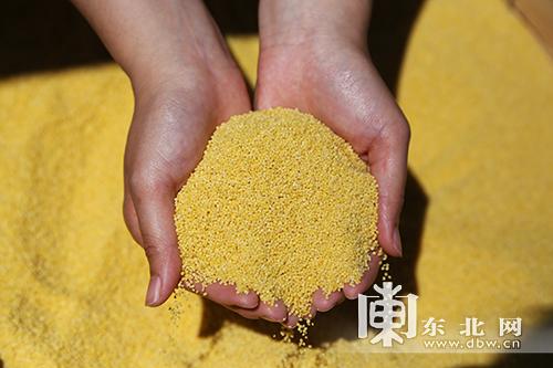 宝清县举办农耕文化节全力打造中国北方硒产品之都