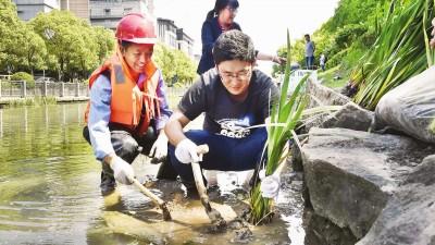 申城中小河道生态修复河道治理将常态化