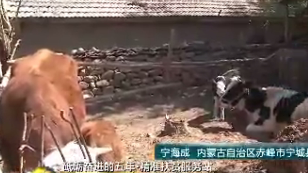 砥砺奋进的五年·内蒙古八家村精准扶贫服务站
