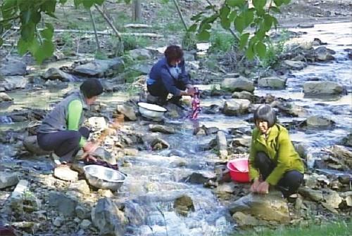 山西灵丘曲回寺村:在养殖脱贫和保护生态中寻找平衡