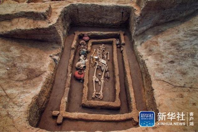 """济南考古发现5000年前""""1米9高""""古人"""