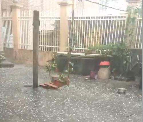 95.5毫米 今日降雨浦东川沙最大