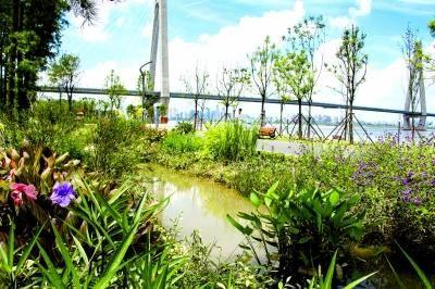 进度提速,湖北开工建设海绵城市145平方公里
