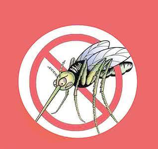 什么样的人易招蚊子?主要看体质