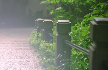 梅雨天也能拍出好照片