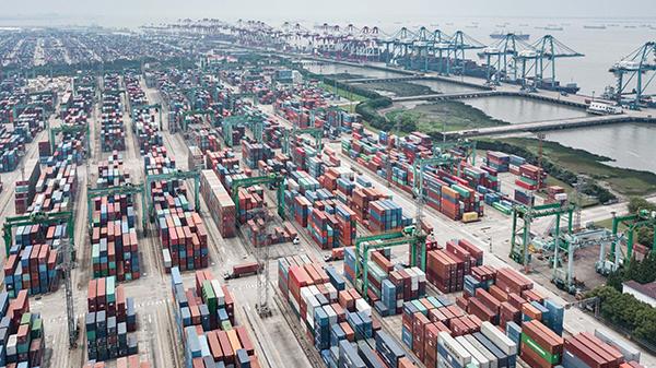 阅读上海100胜 7 | 商港鸥翔 自贸区:这里与世界零距离