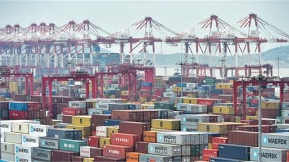 阅读上海100胜 8 | 洋山塔林 东方大港向世界强港进发