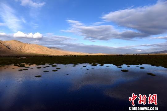 """共护""""中华水塔""""三江源2017<a href='http://search.xinmin.cn/?q=<a href='http://search.xinmin.cn/?q=湿地使者' target='_blank' class='keywordsSearch'>湿地使者</a>行动' target='_blank' class='keywordsSearch'><a href='http://search.xinmin.cn/?q=湿地使者' target='_blank' class='keywordsSearch'>湿地使者</a>行动</a>在成都启动"""