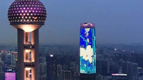 阅读上海100胜 17 | 浦江十景之玉兰花开 北外滩撑起浦西崭新天际线