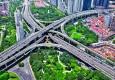 阅读上海100胜 20   延中森林 从24棵香樟树到28万㎡绿地