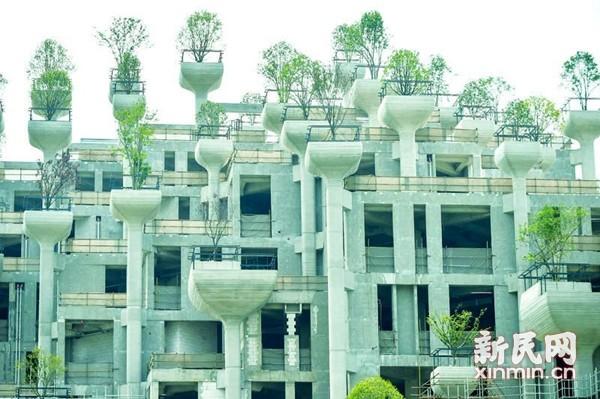 """上海苏州河边庞大建筑群""""空中花园""""引发热议"""