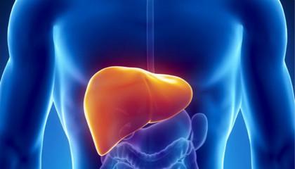 沪将试点推动慢性肝炎患者家庭签约管理服务