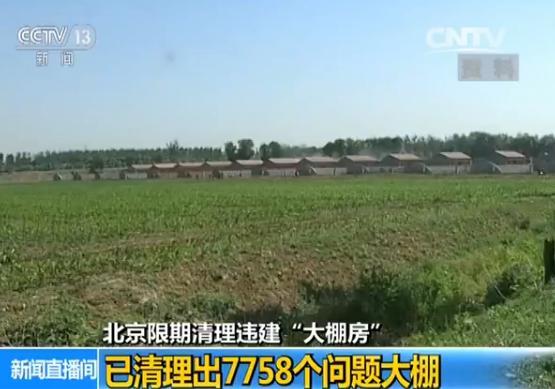 北京限期清理违建大棚房:已清理出7758个问题大棚