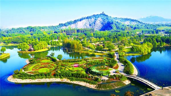 阅读上海100胜 42丨辰山秘境 从废弃工业用地到奇妙植物王国