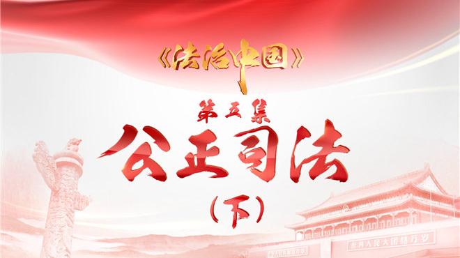 4分钟速览《法治中国》第五集《公正司法》(下)
