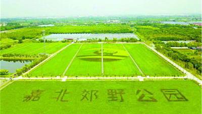 上海嘉北郊野公园24日开放 80亩儿童林成亲子游新去处