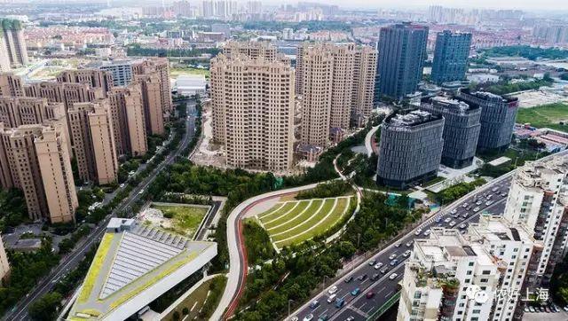 上海最大CBD中央公园建成,枫叶大道金秋走起!