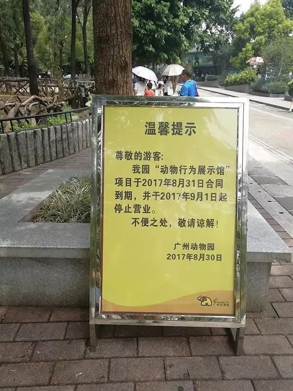 广州动物园在园区内安置的通知告示。   但本应停止的马戏表演在9月1日却未如期关停。一位环保志愿者前往广州动物园调查发现,尽管在动物园入口和表演马戏的场馆外,都有广州动物园设立的公告牌,称场馆从9月1日起关闭,但动物行为展示馆仍在对外售票,进行动物表演。观众虽然只有不到20人,但由于表演几乎是循环进行的,这些动物仍然需要长时间表演。