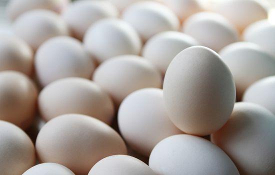 8月份河北省鸡蛋价格大幅上涨 平均价格(每500克)鸡蛋4.54元,月环比上涨38.4%